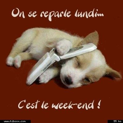 image animaux week end